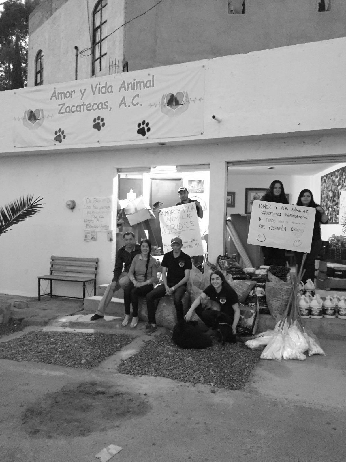 """FUNDACIÓN UNIDOS NOROESTE Y DELPHIS CABLEADOS REALIZAN IMPORTANTE DONACIÓN A LA ASOCIACIÓN """"AMOR Y VIDA ANIMAL"""""""