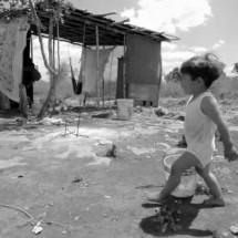 DESTRUYEN LA TIERRA PARA BENEFICIO DE UNOS POCOS: EL CAMPO ES DE TODOS
