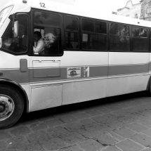 AUTORIZAN ALZA AL TRANSPORTE A PARTIR DE MAÑANA