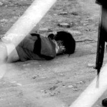 SIETE MUJERES SON ASESINADAS DIARIAMENTE EN MÉXICO
