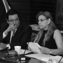 DIPUTADOS BUSCAN RECOMPONER INCONSTITUCIONALIDAD EN LEY DE DATOS PERSONALES