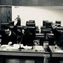 PIDEN LICENCIA NORMA CASTORENA, CARLOS PEÑA Y JORGE TORRES