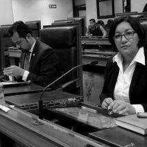 DIPUTADOS QUE ANDABAN EN PRECAMPAÑA REGRESAN A SEGUIR COBRANDO