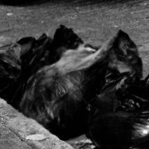 DEJAN CUERPOS DE CUATRO HOMBRES EN BOLSAS DE PLÁSTICO