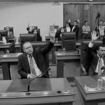 LOS DIPUTADOS LUIS ESPARZA Y EDGAR VIRAMONTES PRESIDIRÁN LA CRIyCP Y CPPyF RESPECTIVAMENTE