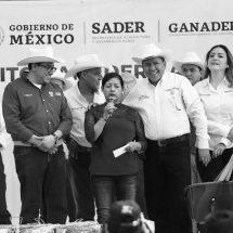 CUIDEMOS EL CRÉDITO GANADERO, EXHORTA DAVID MONREAL A PRODUCTORES