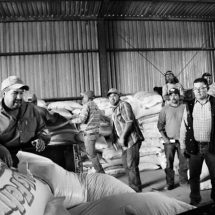 PRODUCTORES CAPITALINOS RECIBEN APOYOS DE SEMILLA